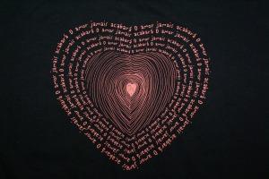 Motivo da T-shirt comemorativa do Ano Paulino